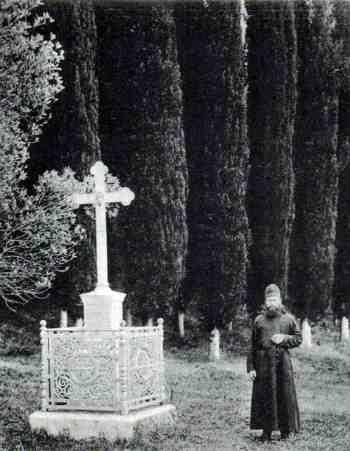 Ново-Афонский Симоно-Кананитский мужской монастырь, аллея 1905 год, заповедник Анакопия